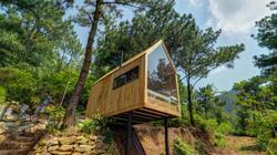 Đưa nhau đi trốn trong nhà gỗ 12m2 nằm chơi vơi giữa rừng thông Hà Nội
