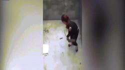 Cảnh cô gái VN bị chuột khổng lồ rượt đuổi lên báo Anh