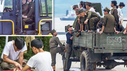 Ảnh binh sĩ Triều Tiên cực hiếm, phải liều mạng mới giấu được