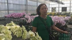 Một ngày khám phá nông nghiệp Đài Loan của đoàn Nông dân xuất sắc