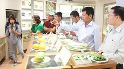 """Trải nghiệm khó quên trong ngày """"du học"""" nông nghiệp Đài Loan"""
