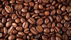 Giá nông sản hôm nay 30.10: Xuất khẩu cà phê Robusta tháng 10 sụt giảm, giá hồ tiêu bất động