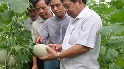 Nông nghiệp CNC là xu thế tất yếu, Bắc Miền Trung không thể đứng ngoài
