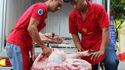 Giá lợn (heo) hôm nay 10.11:Vì sao lợn của doanh nghiệp giá 35.000 đ/kg, lợn của dân chỉ có giá 29.000 đ/kg?
