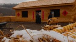 Chưa từng thấy: Dùng 20.000 bắp ngô xây cả trang trại ở TQ