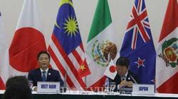 """Thủ tướng Canada vắng mặt ở đàm phán TPP do """"hiểu lầm lịch trình"""""""