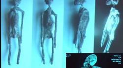 """Tiết lộ mới về xác ướp """"người ngoài hành tinh"""" ở Peru"""