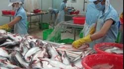 Nhà đầu tư mất kiên nhẫn với cổ phiếu thủy sản Hùng Vương, Vĩnh Hoàn