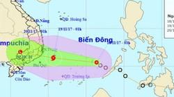 KHẨN: Bão số 14 sắp vào bờ biển Nam Trung Bộ, nhiều nơi sẽ mưa như trút