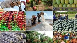 Cơ cấu lại ngành nông nghiệp giai đoạn 2017 - 2020