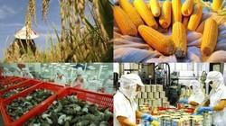Nhiều nơi lúng túng với bộ tiêu chí đánh giá tái cơ cấu nông nghiệp