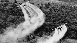 Chiến dịch Ranch Hand và tội ác của Mỹ ở Việt Nam