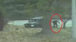 Lính Triều Tiên đào tẩu ngoạn mục là người thế nào?