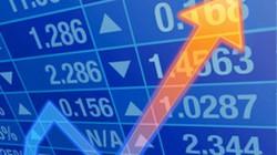 Thao túng giá cổ phiếu, nữ giám đốc công ty chứng khoán bị khởi tố