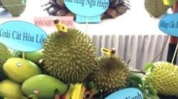 """Chỉ 10% trái cây vào được siêu thị, siêu thị """"chê"""" trái cây Việt?"""