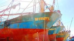 Đại Nguyên Dương không bồi thường 9 tỷ đồng: Ngư dân sắp khởi kiện