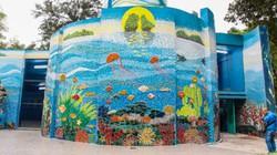 """Không ngờ công viên Thống Nhất lại có địa điểm sống ảo """"chất"""" thế này"""