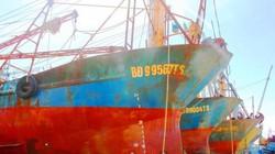 Chủ 19 tàu 67 hỏng đòi bồi thường 45,6 tỷ: Nam Triệu lên tiếng
