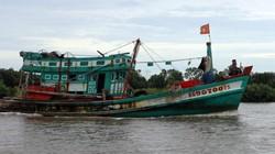 Bạc Liêu: Bão số 15 sắp vào, cấm tàu thuyền ra khởi từ 7 giờ sáng 20.12