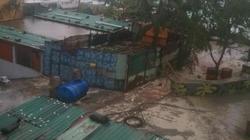 Hậu bão Tembin: Toàn bộ vườn rau xanh ở Trường Sa bị dập, nhiễm mặn