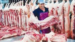 Giá heo (lợn) hơi hôm nay 28/12: Bộ NN&PTNT dự báo giá lợn Tết sẽ tăng do nhu cầu chế biến