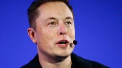 Sau một dòng tweet, Elon Musk ngay lập tức nhận trái đắng