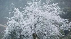 Nóng 24h qua: Chuyên gia khí tượng dự báo điểm tuyết rơi vào mùa đông 2018
