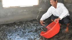 Ninh Bình: Huyện Kim Sơn bứt phá nhờ lòng dân đồng thuận