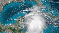 Bão sức gió 180 km/giờ đe dọa, bang Mỹ tuyên bố tình trạng khẩn cẩp