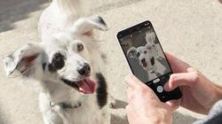 Google vỗ ngực giương oai Pixel 3, dìm hàng máy ảnh iPhone Xs