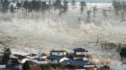 Sóng thần ập vào Indonesia cao tới 11,3 mét