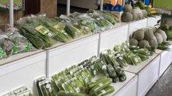 TP HCM: Hội cần làm cầu nối tiêu thụ nông sản cho nông dân