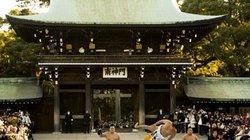 Tiết lộ lý do hàng triệu phụ nữ Nhật Bản đều mơ làm vợ võ sĩ Sumo