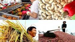 Phó Thủ tướng Vương Đình Huệ chủ trì Diễn đàn Nông dân quốc gia