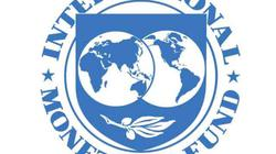 IMF tổ chức gì?