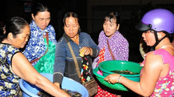 """Những ngôi chợ cá """"ma"""" rất lạ họp giữa đêm khuya mùa lũ miền Tây"""