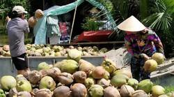Thêm cơ hội quảng bá, tiêu thụ đặc sản cho nông dân Bến Tre