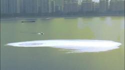 TQ: Xoáy nước khổng lồ xuất hiện giữa sông khiến dân lo sợ