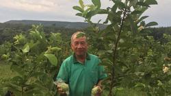 Nghỉ hưu về làm vườn vẫn ung dung kiếm nửa tỷ đồng/năm