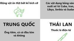 Những thứ bình thường ở Việt Nam bị cấm mang vào nước khác
