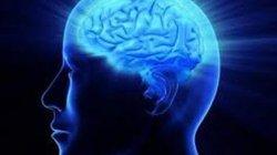 Bài test IQ giúp bạn nhận biết IQ của mình ở khoảng nào