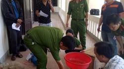 Nghệ An: Bắt quả tang đối tượng vận chuyển 29 con rùa, tê tê quý hiếm