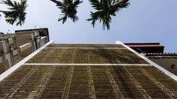 """""""Choáng"""" với căn nhà ở Tây Hồ, Hà Nội có cửa sổ tre cao 8m"""