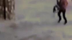 Video: Chó pit bull lao vào bé gái Thổ Nhĩ Kỳ và diễn biến kinh hoàng