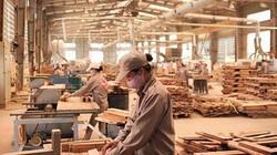 Con số ấn tượng: Kim ngạch xuất khẩu gỗ đạt 7,6 tỷ USD