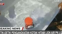 Cận cảnh hộp đen máy bay Indonesia được thợ lặn đưa lên bờ