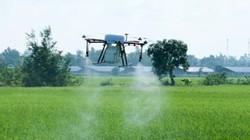 Nông dân 4.0: Dùng máy bay phun thuốc trên ruộng lúa ở miền Tây