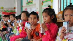 Chương trình Sữa học đường: Nên chọn sữa nào?