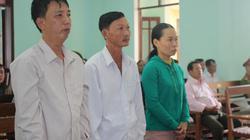 """Quảng Nam: Vợ chồng """"người nghèo"""" lãnh án vì phá rừng Tiên Lãnh"""