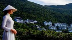 Nâng niu màu xanh cho bán đảo Sơn Trà